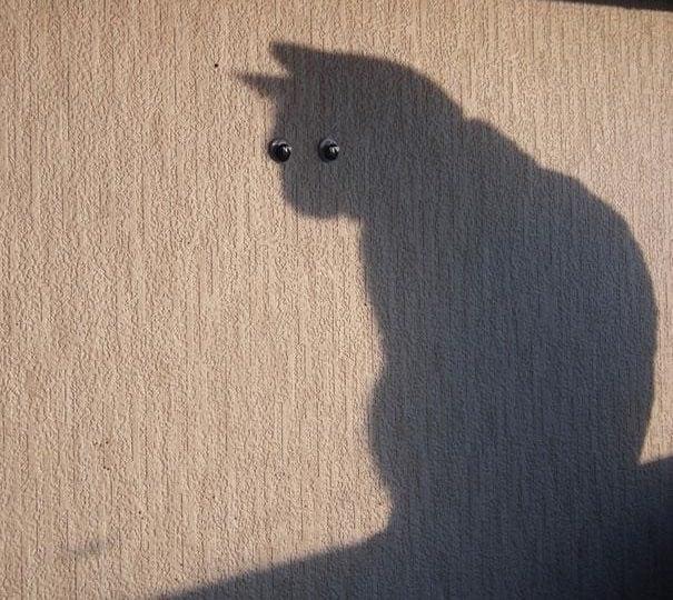 [Foto] 15 + 1 giochi di ombre che stravolgono le fotografie