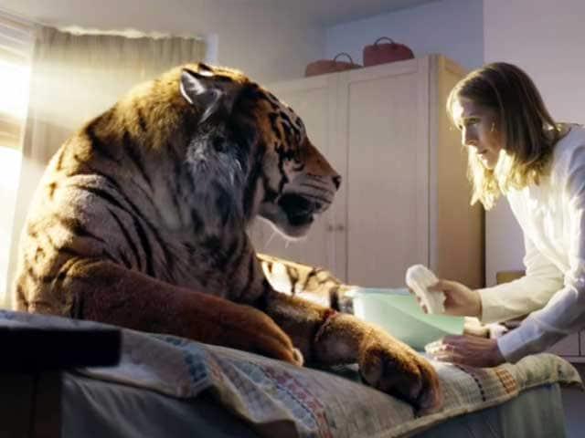 Salviamo la tigre!