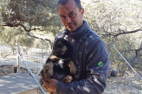 Takis, l'amante degli animali, sta salvando 160 cani a Creta!