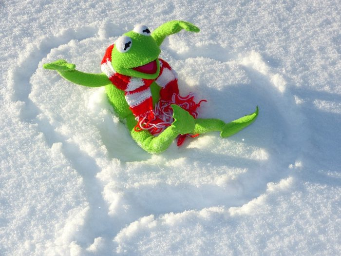 Inverno: 10 cose che (forse) non sai