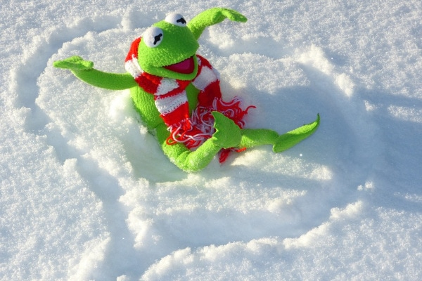 10 cose che non sai sull'inverno