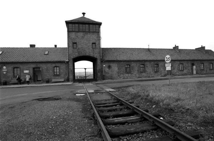 Junior Reporter | La tragedia dell'Olocausto