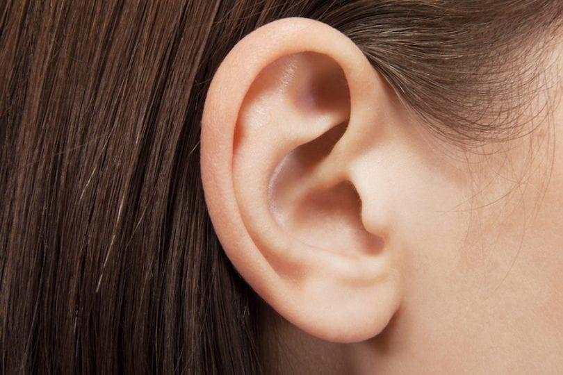 Come funzionano l'orecchio e l'udito