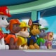 Le avventure dei cuccioli di Paw Patrol al cinema dal 22 dicembre all'8 gennaio / Image 3