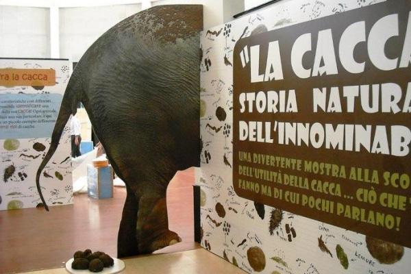 """Inaugurata al Bioparco di Roma la mostra """"La cacca, storia dell'innominabile"""""""