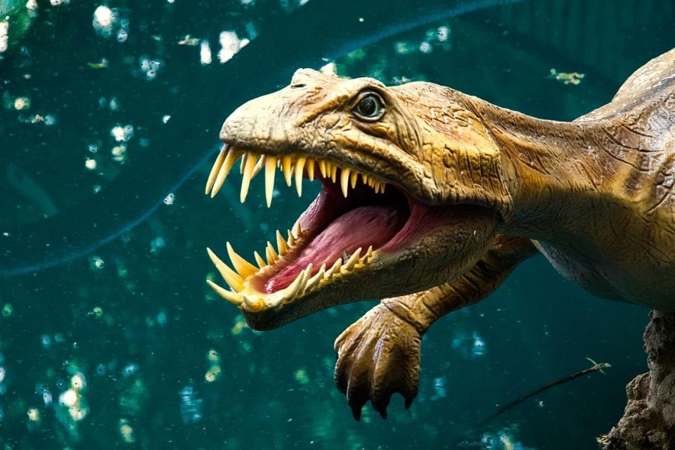 Dieci cose che non sapete sui dinosauri