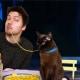 Gatto (e padrone) ricreano scene famose di film (FOTO) / Image 3