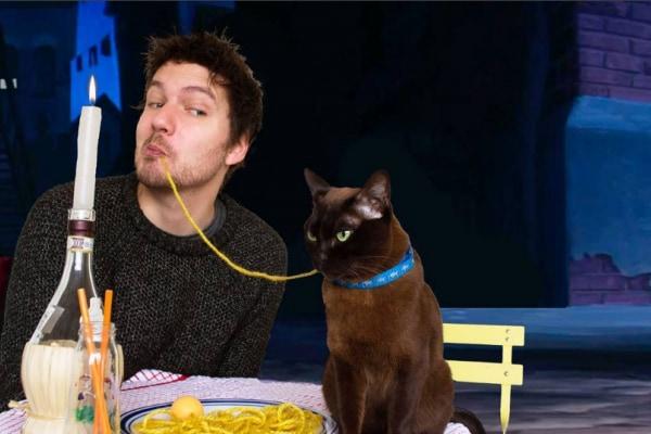 Gatto (e padrone) ricreano scene famose di film (FOTO)