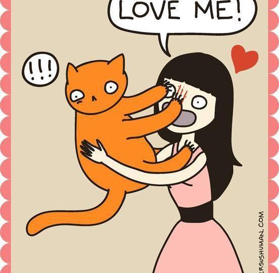 10 illustrazioni che solo chi ha un gatto potrà capire