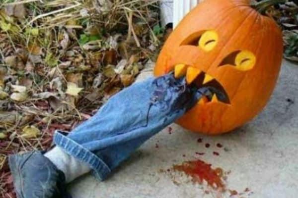 17 zucche di Halloween davvero spettrali
