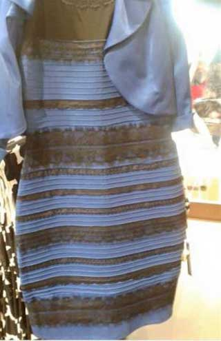 o negro¿De qué color sonFocus Oroazul Junior roeWBEQxdC