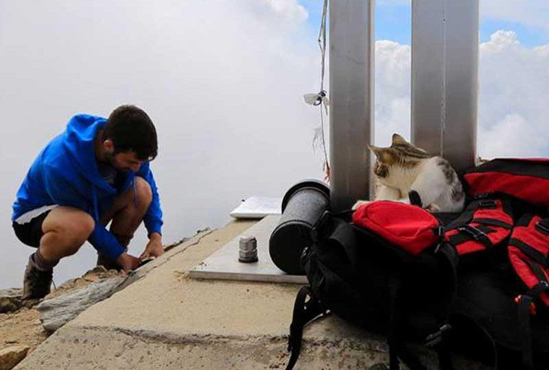 Storia di Orione il gatto alpinista | Gallery