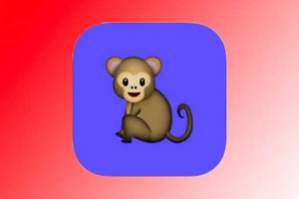 Monkey | La videochat che ti collega… a caso