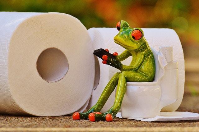 Toilette: che cosa leggete in bagno?