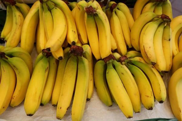 La scienza salverà le banane?