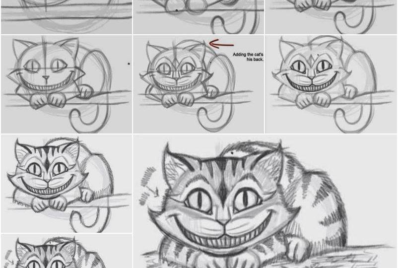 come disegnare animali e altro