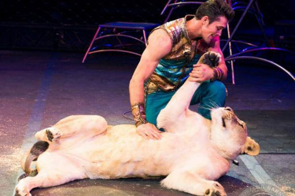 Il circo della Ringling Bros chiude i battenti | Gallery