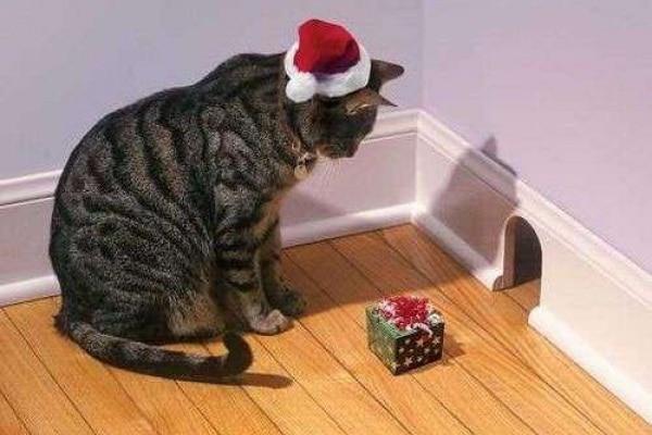 Natale: le 11 foto più pazze trovate sul web