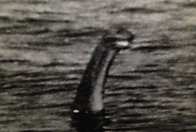 Il mostro di Loch Ness esiste veramente?