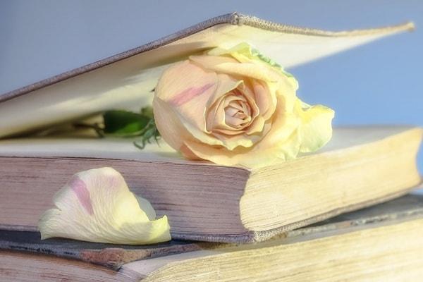 Il 23 aprile è la Giornata Mondiale del Libro (e delle rose)!