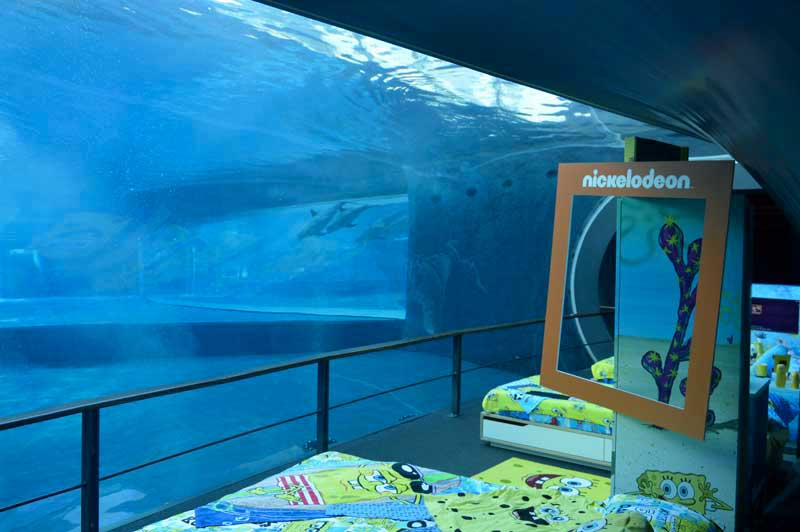 3510e7433b Vorreste passare una notte in compagnia dei pesci dell'acquario di Genova e  di Spongebob? - Focus Junior