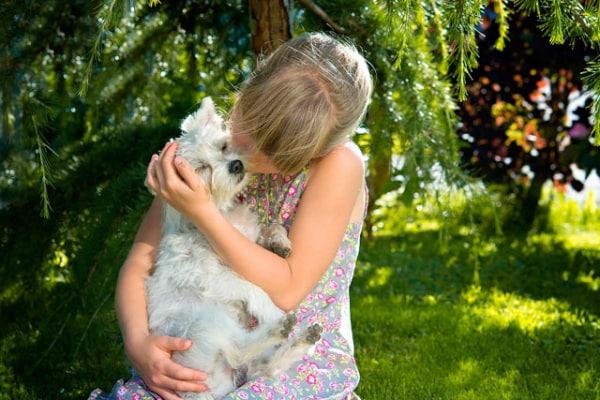 Adotta un cane (o un gatto) con Focus Wild | Nuovi amici che cercano casa