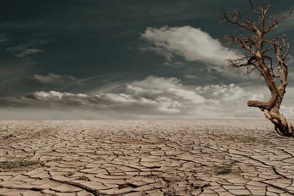 Quanto tempo abbiamo per salvare la Terra?