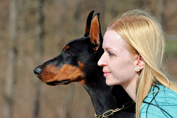 Perché i cani sono affettuosi? È scritto nei loro geni
