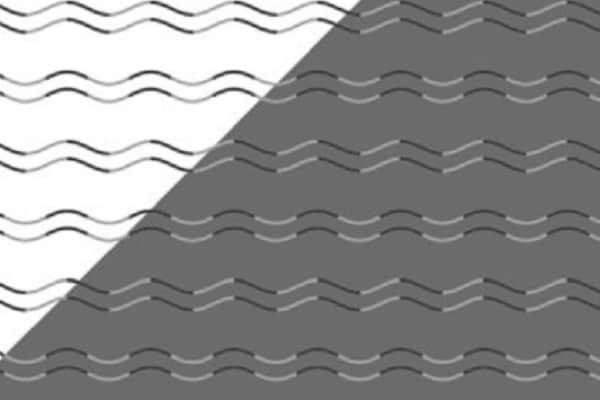 L'illusione ottica di Takahashi: le linee sono curve o a zig-zag?