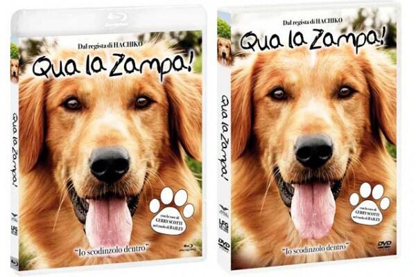 Qua la zampa! un film per tutta la famiglia, arriva in dvd