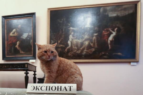 I nove musei del mondo che un amante dei gatti non si può perdere!