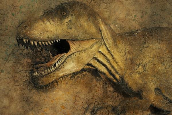 Dinosauri: Cinque film per bambini