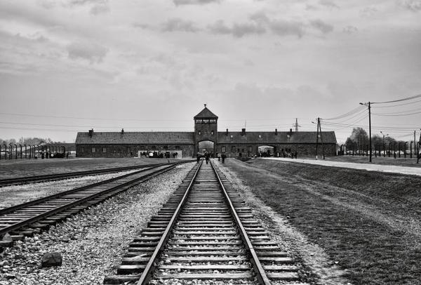 27 gennaio, Giornata della Memoria: capire cosa sono stati la Shoah e l'Olocausto