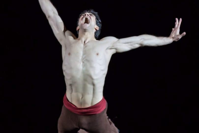 Roberto Bolle balla in tv