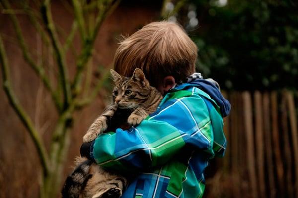 Adotta un cane (o un gatto) con Focus Wild | Ecco nuovi amici che cercano casa