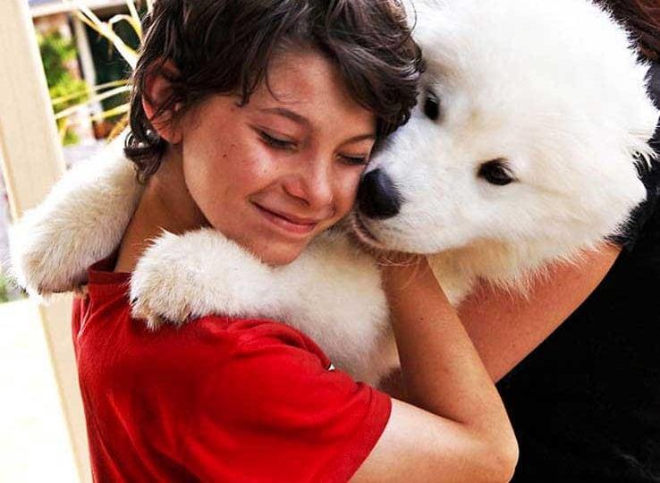 I venti teneri cani che abbracciano il proprio padrone