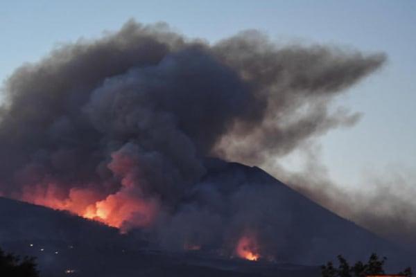 Emergenza incendi: l'Italia brucia!