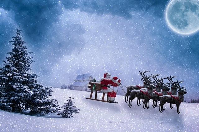 Le renne di Babbo Natale sono maschi o femmine?