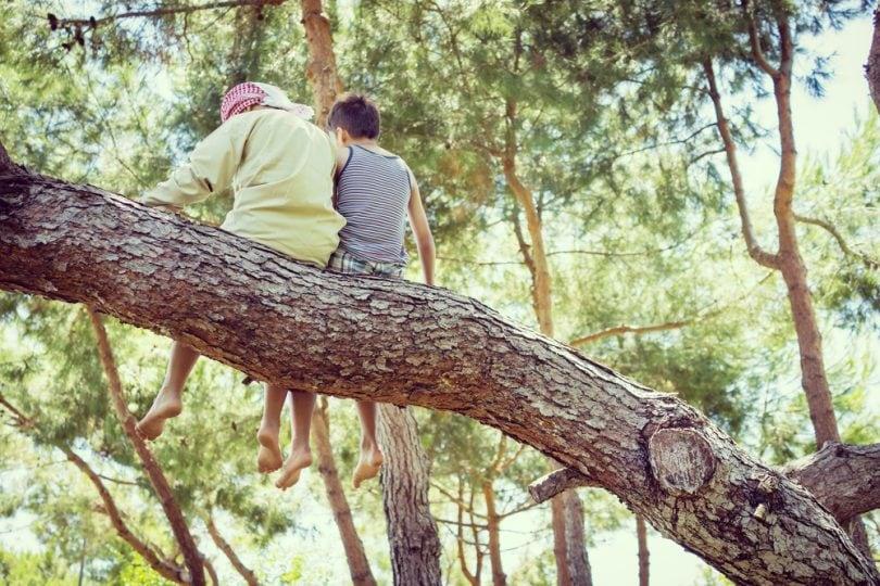 """""""Bimbisvegli"""": la classe che va a scuola nel bosco"""