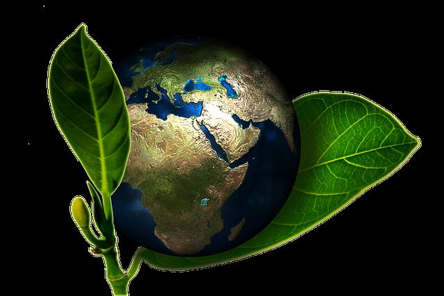 5 giugno, Giornata Mondiale dell'Ambiente: perché è nata, di cosa si parlerà