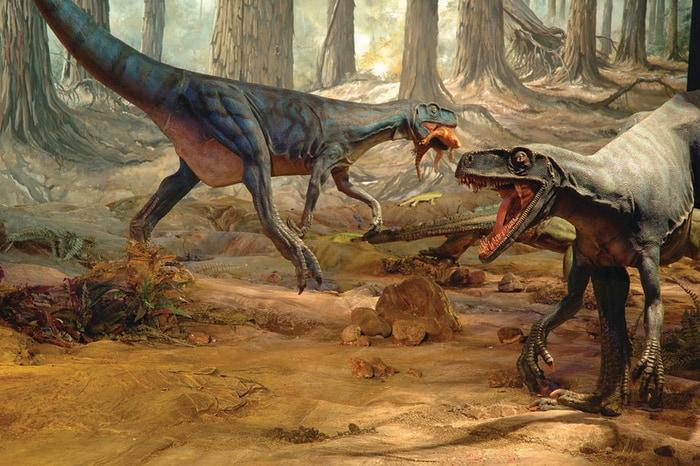 Dinosauri dall'Argentina: i più grandi esemplari della Preistoria sbarcano al Mudec di Milano!