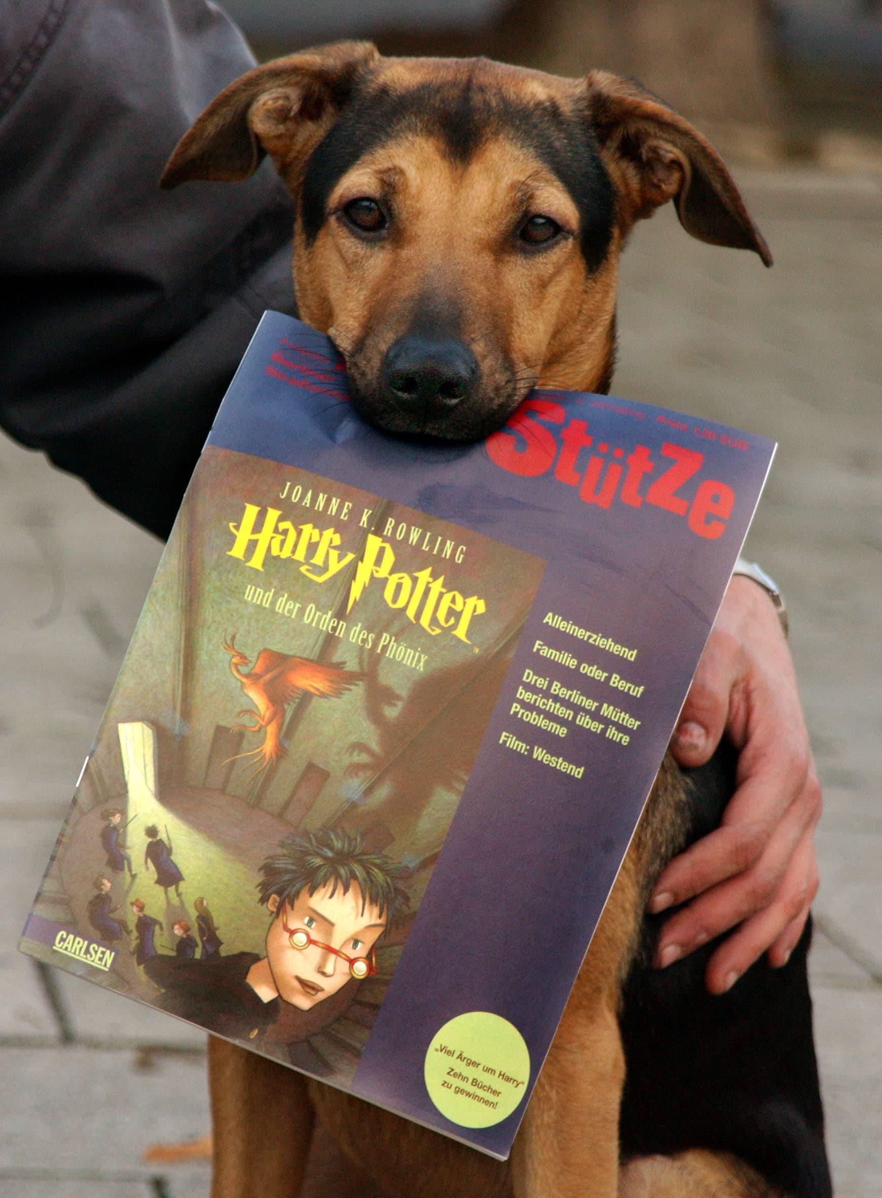 Le Citazioni Più Belle Di Harry Potter Che Vi Aiutano Tutti I Giorni