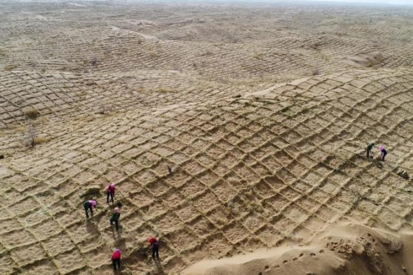 In Cina si previene la desertificazione con una rete speciale!