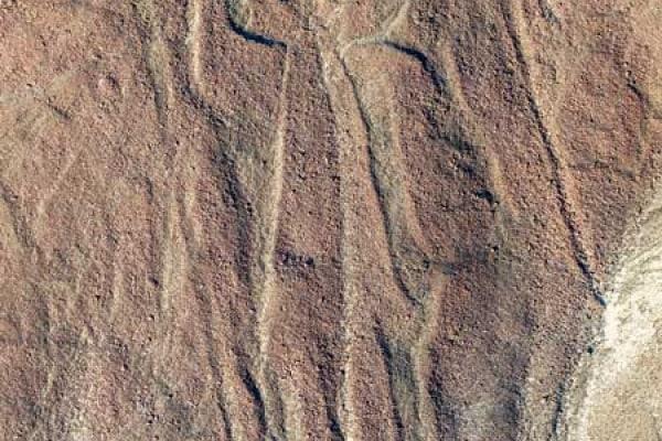 Le linee di Nazca | Gallery