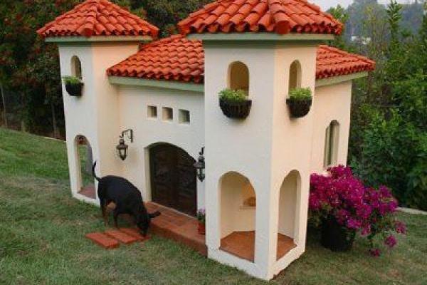 15 bizzarre case di lusso per cani