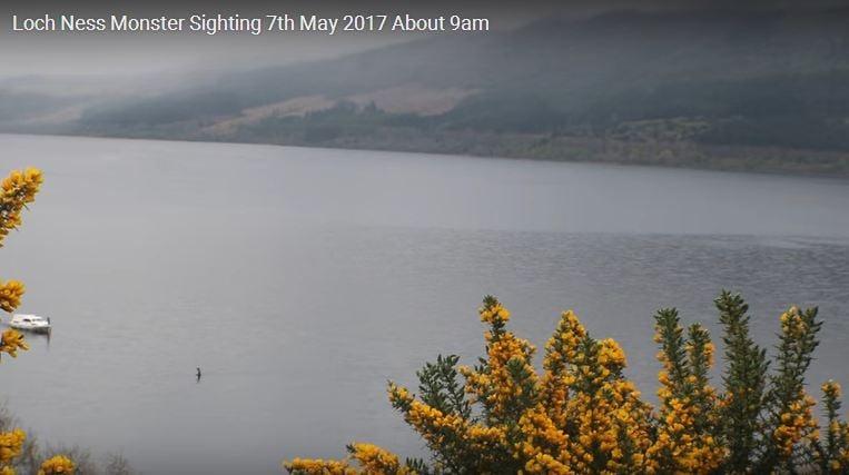 Junior Reporter, il mistero di Loch Ness