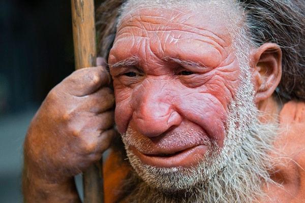 I primi artisti della preistoria? Furono i Neanderthal!
