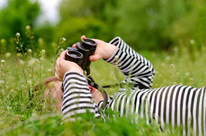 Idee di lezione: alla scoperta di piante e uccelli nel cortile della scuola