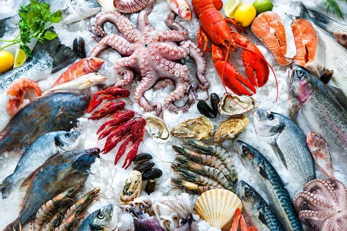 Box: Pappa Fish, il pesce fresco nelle mense